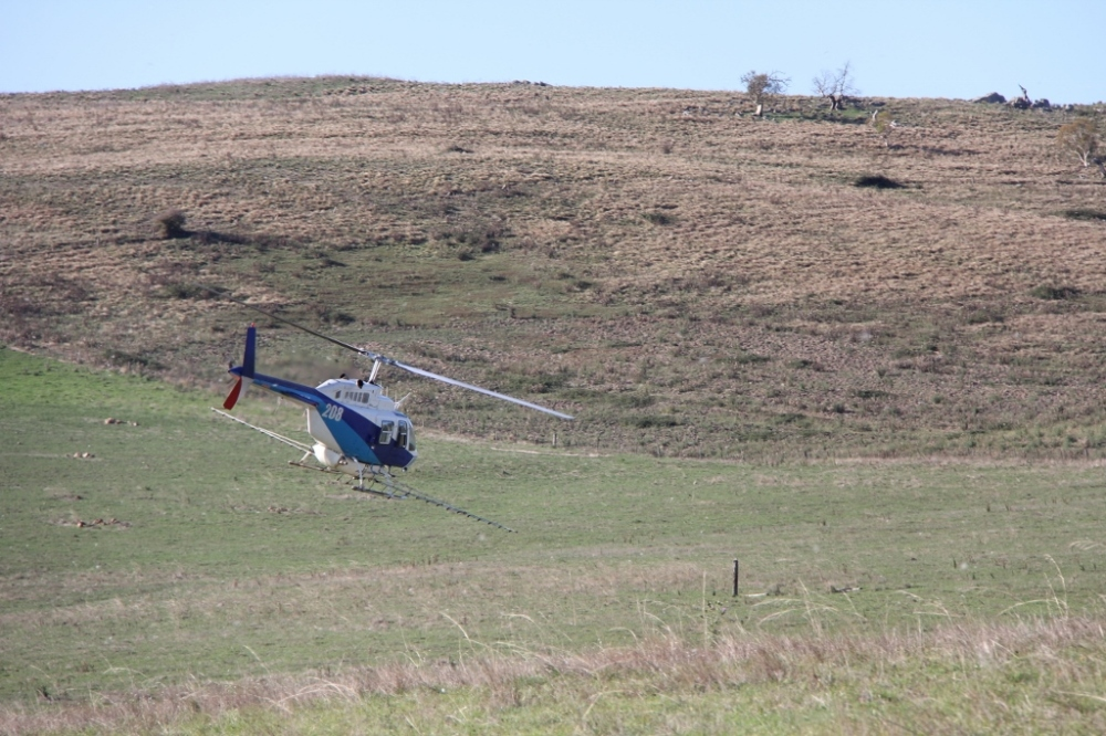 Come and see this weed spraying helicopter on saturday and find out about aerial spraying of tussock and much more